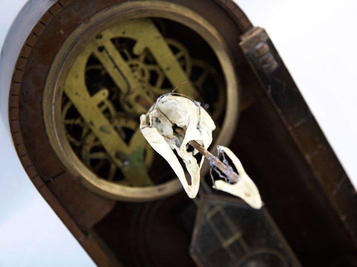 Mantam マンタム クロック「鳥の頭骨が一時間回の僅かな時間だけ元の状態になる時計」