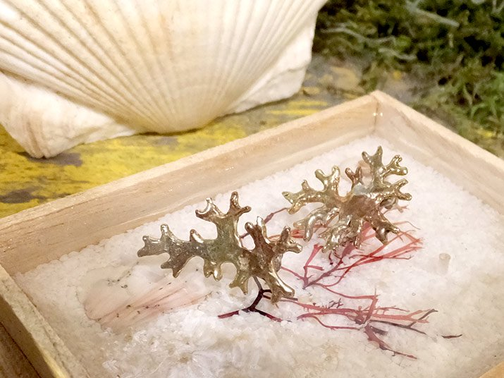 fillyjonk フィリフヨンカ 海藻ピアス トサカノリ01