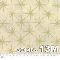 Grunge Seeing Stars Metallic-30148-13M(メタリック加工)(B-03)