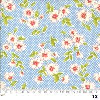 Figs & Shirtings-20390-12(A-06)