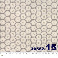 METROPOLIS-30562(C-01)