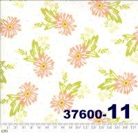 HAPPY DAYS-37600(H-01)