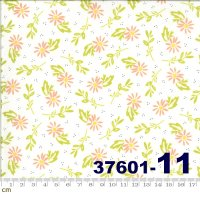 HAPPY DAYS-37601(H-01)