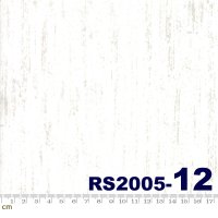 BRUSHED-RS2005(D-02)