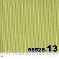 SPRING CHICKEN-55526(A-07)