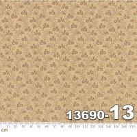 PETITE PRINTS-13690-13(D-03)