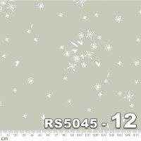 FIRST LIGHT-RS5045-12(A-04)