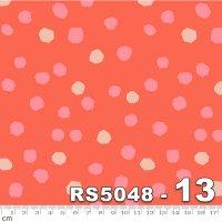 FIRST LIGHT-RS5048-13(A-04)