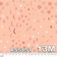 FIRST LIGHT-RS5051-13M(A-04)(メタリック加工)