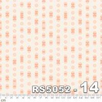 FIRST LIGHT-RS5052-14(A-04)