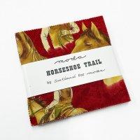 Horseshoe Trail-11210PP
