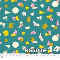 Food Group-RS5039-14(A-03)