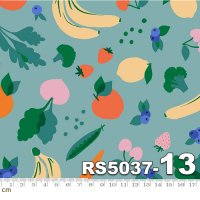 Food Group-RS5037-13(A-03)