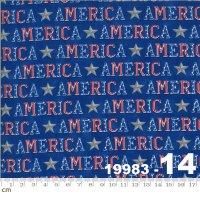 AMERICA THE BEAUTIFUL-19983-14(A-03)