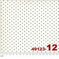 AMERICAN GATHERING-49123-12(A-03)
