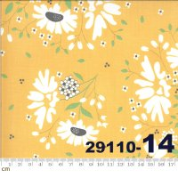 SPRING BROOK-29110-14(A-06)