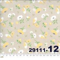 SPRING BROOK-29111-12(A-06)