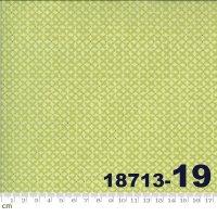SOPHIE-18713-19(A-06)