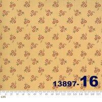 JARDIN DE FLEURS-13897-16(A-02)