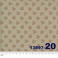 JARDIN DE FLEURS-13897-20(A-02)