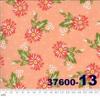 HAPPY DAYS-37600-13(A-06)