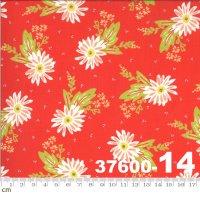 HAPPY DAYS-37600-14(A-06)