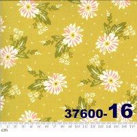 HAPPY DAYS-37600-16(A-06)