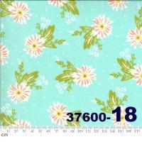 HAPPY DAYS-37600-18(A-06)