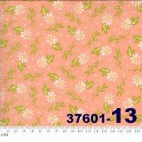 HAPPY DAYS-37601-13(A-06)