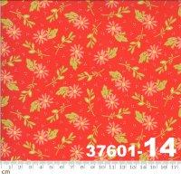HAPPY DAYS-37601-14(A-06)