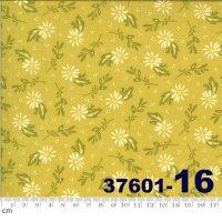HAPPY DAYS-37601-16(A-06)