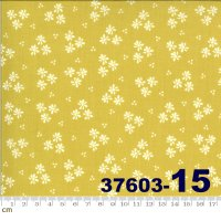 HAPPY DAYS-37603-15(A-06)