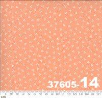 HAPPY DAYS-37605-14(A-06)