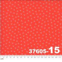 HAPPY DAYS-37605-15(A-06)