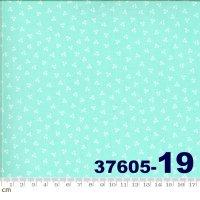 HAPPY DAYS-37605-19(A-06)
