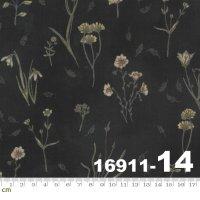 Botanicals-16911-14(A-06)
