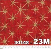 Grunge Seeing Stars Metallic-30148-23M(メタリック加工)(B-03)