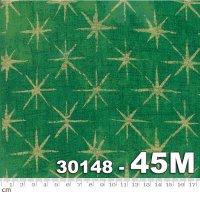 Grunge Seeing Stars Metallic-30148-45M(メタリック加工)(B-03)