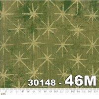 Grunge Seeing Stars Metallic-30148-46M(メタリック加工)(B-03)