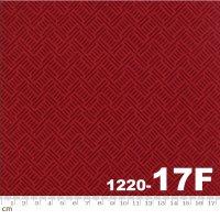 WOOL AND NEEDLE FLANNELS V-1220-17F(フランネル)(C-01)