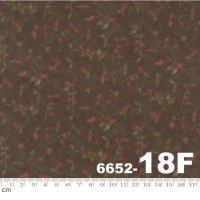 ENDANGERED SANCTUARY FLANNELS-6652-18F(フランネル)(C-01)