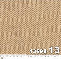 PETITE PRINTS-13698-13(D-03)