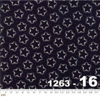 Star and Stripe Gatherings-1263-16(A-12)