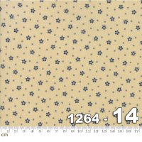 Star and Stripe Gatherings-1264-14(A-12)