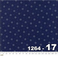 Star and Stripe Gatherings-1264-17(A-12)