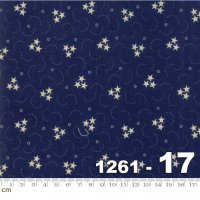 Star and Stripe Gatherings-1261-17(A-12)