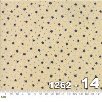 Star and Stripe Gatherings-1262-14(A-12)