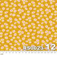 Stay Gold-RS0023-12(A-05)