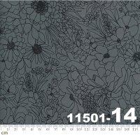 Illustrations-11501-14(A-07)