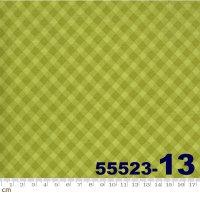Spring Chicken-55523-13(A-06)
